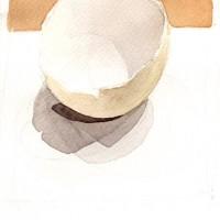 Eggshell 1