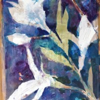Lillies 2460